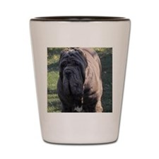 coster Shot Glass