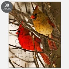 cardinals2poster Puzzle
