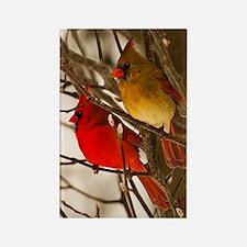 cardinals2poster Rectangle Magnet