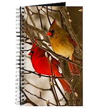 cardinals2poster Journal