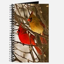 cardinals2poster Journal