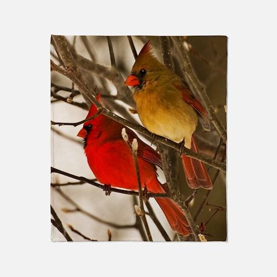 cardinals2poster Throw Blanket