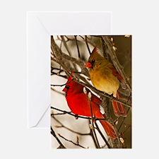 cardinals2poster Greeting Card