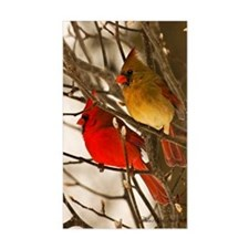 cardinals2poster Decal