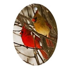 cardinals2poster Oval Ornament