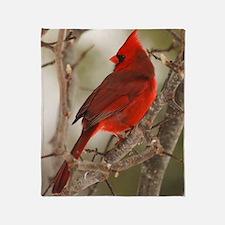 cardinal1pster Throw Blanket