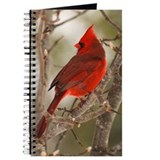 Cardinal Journals & Spiral Notebooks