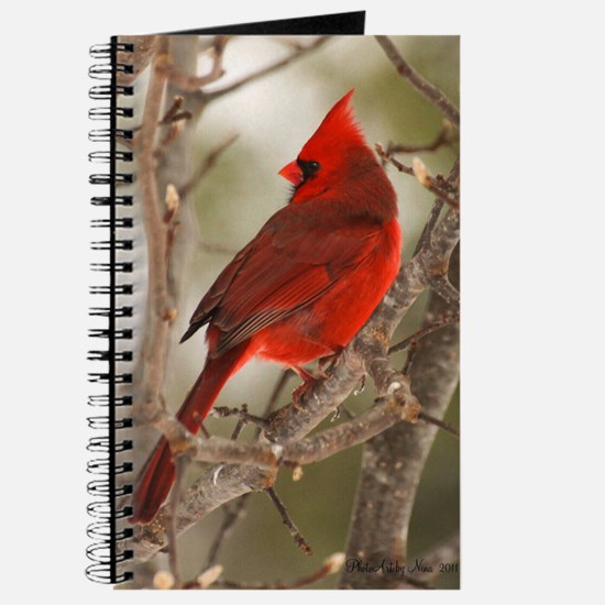 cardinal1pster Journal