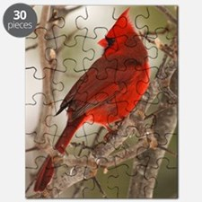 cardinal1pster Puzzle