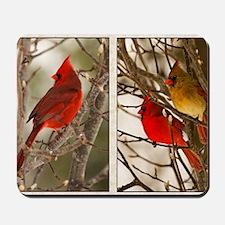 cardinalstwopics Mousepad
