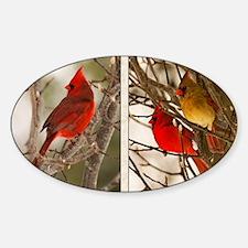 cardinalstwopics Sticker (Oval)
