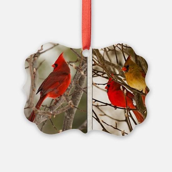 cardinalstwopics Ornament