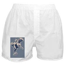 palin-jerex-CRD Boxer Shorts