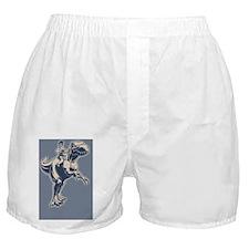 palin-jerex-BUT Boxer Shorts
