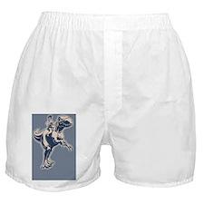 palin-jerex-OV Boxer Shorts