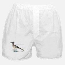 desert roadrunner Boxer Shorts