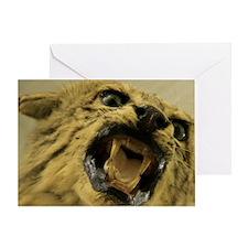 cat_6x4_pcard Greeting Card