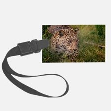 Amur Leopard Luggage Tag