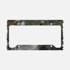 x14wht Christmas Wolf License Plate Holder