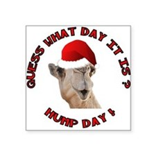Guess What Day it Is Hump Day Camel Sticker