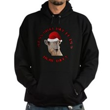 Guess What Day it Is Hump Day Camel Hoodie