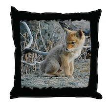 x14blk Den2 098 Throw Pillow