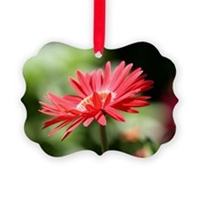 redflower2 Ornament