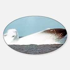 birmingham framed  panel print Sticker (Oval)