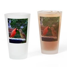 LoveBirdsPil Drinking Glass