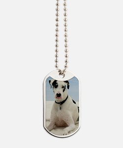 GD beach oval orn Dog Tags