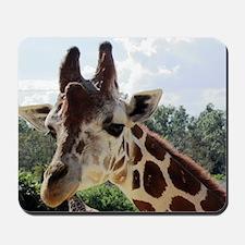over size giraffe 1 Mousepad
