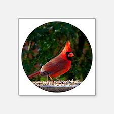 "cardinalCIR Square Sticker 3"" x 3"""