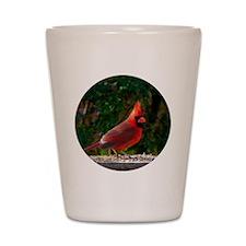 cardinalCIR Shot Glass