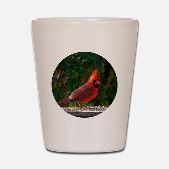 cardinalCIR Shot Glass