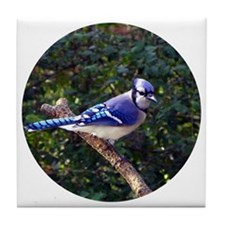 bluejayCir Tile Coaster