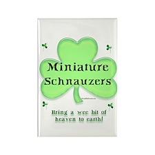 Mini Schnauzer Heaven Rectangle Magnet