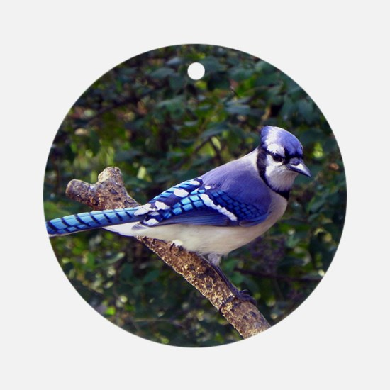 bluejayPil Round Ornament