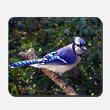 bluejayPil Mousepad