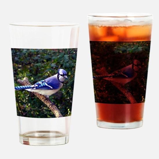 bluejayPil Drinking Glass