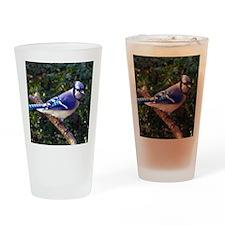 bluejayMP Drinking Glass