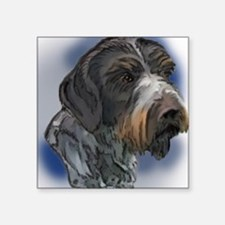 "german_wirehaired_pointer1 Square Sticker 3"" x 3"""