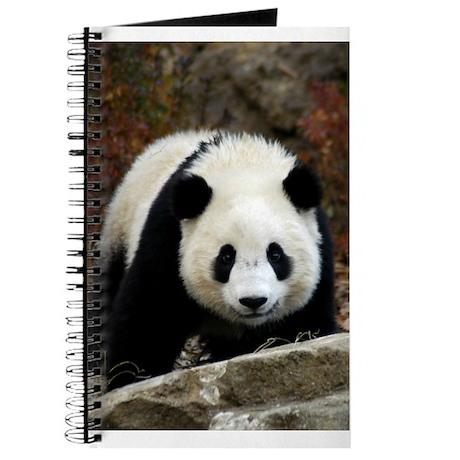 Tai Shan Head On Journal