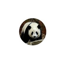 Tai Shan Head On Mini Button
