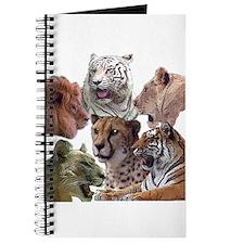 big cats Journal