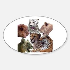 big cats Oval Decal