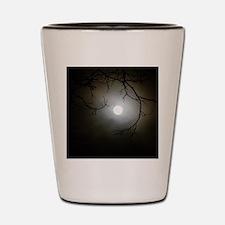 Moon_1 Shot Glass