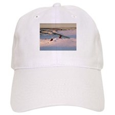 Eagles, Eagle Baseball Cap
