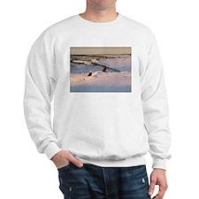 Eagles, Eagle Sweatshirt