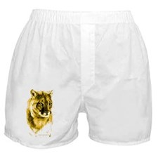 cougar 10tall-400 BlueBorder Painting Boxer Shorts