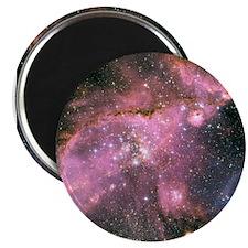 "HUBBLE TELESCOPE GHOSTIMAGE 2.25"" Magnet 10 pack"